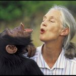 KYE-YAC Is Dr. Jane Goodall's Roots And Shoots Project Of The Month!!!